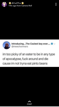Funny, but also very true!: Stettat  19m ago from Camera Roll  Introducing...The Coziest boy ever.... v  @meechonmars  im too picky of an eater to be in any type  of apocalypse, fuck around and die  cause im not tryna eat pinto beans  CHAT Funny, but also very true!