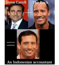 Funny, Steve Carell, and The Rock: Steve Carell  The Rock  An Indonesian accountant Seems legit.