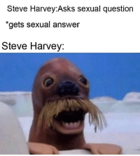 "Family, Funny, and Steve Harvey: Steve Harvey:Asks sexual question  ""gets sexual answer  Steve Harvey: This is a family show"