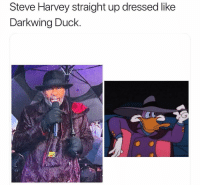 Funny, Steve Harvey, and Duck: Steve Harvey straight up dressed like  Darkwing Duck Bruhhh