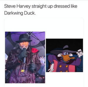 Dank, Memes, and Steve Harvey: Steve Harvey straight up dressed like  Darkwing Duck. I am the terror that flap in the night. by glcadet7 MORE MEMES