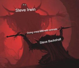 Steve Irwin Doing Crazy Shit With Animals Steve Backshall Deadly 60 Was The Shit Animals Meme On Me Me