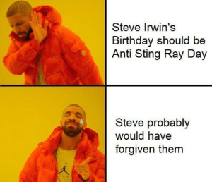 RIP you legend: Steve Irwin's  Birthday should be  Anti Sting Ray Day  Steve probably  would have  forgiven them RIP you legend