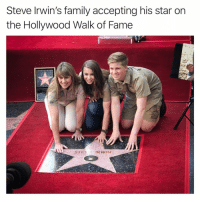 Family, Funny, and Star: Steve Irwin's family accepting his star on  the Hollywood Walk of Fame Follow my other account @tanksgoodnews to have your faith in humanity restored