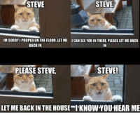 I Pooped: STEVE  STEVE)  IM SORRY I POOPED ON THE FLOOR, LET ME  BACK IN.  ICAN SEE YOU IN THERE, PLEASE LET ME BACK  IN  PLEASE STEVE,  STEVE!  LET ME BACK IN THE HOUSE I'KNOW YOU HEAR ME