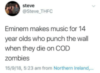 Eminem, Music, and Zombies: steve  @Steve_THFC  Eminem makes music for 14  year olds who punch the wall  when they die on COD  zombies  15/9/18, 5:23 am from Northern Ireland,.. me🤜irl
