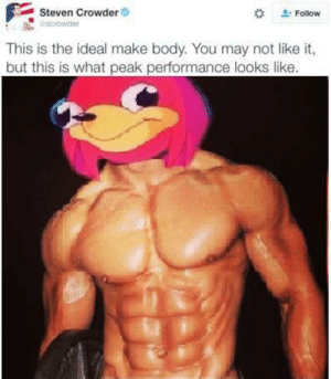 Dank, Memes, and Target: Steven Crowder  escrowder  Follow  This is the ideal make body. You may not like it,  but this is what peak performance looks like. This is the ideal male body, do you know da wae my brudda. by d13bacc FOLLOW 4 MORE MEMES.