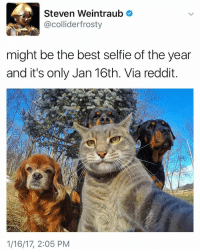 It's Lit, Memes, and Reddit: Steven Weintraub  @collider frosty  might be the best selfie of the year  and it's only Jan 16th. Via reddit.  1/16/17, 2:05 PM It's lit.