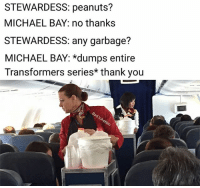Memes, Transformers, and Thank You: STEWARDESS: peanuts?  MICHAEL BAY: no thanks  STEWARDESS: any garbage?  MICHAEL BAY: *dumps entire  Transformers series* thank you STEWARDESS: *puts on gloves* very gross, sir