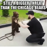 FACTS!!!!: STILAR  BIGGERTHREAT  THAN THE CHICAGO BEARS FACTS!!!!