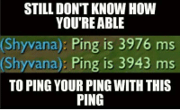 Memes, 🤖, and Shyvana: STILL DON'T KNOW HOW  YOU'RE ABLE  Shyvana)  Ping is 3976 ms  (Shy vana): Ping is 3943 ms  TO PING YOUR PINGWITH THIS  PING Yo dawg