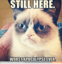 STILL HERE.  APOCALYPSE EVER  Reinvent  by olivia Christine for iFunny Ugh I was looking forward to it!              -Pikacu