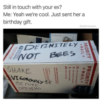Birthday, Definitely, and Ex's: Still in touch with your ex?  Me: Yeah we're cool. Just sent her a  birthday git.  @highfiveexpert  dailwwere  DEFINITELy  SHAKE  l  T3E FORE @x__antisocial_butterfly__x is my favorite place to go for buzz worthy memes. Follow @x__antisocial_butterfly__x and enjoy the ride!