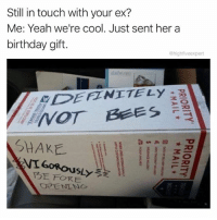 Bae, Birthday, and Cute: Still in touch with your ex?  Me: Yeah we're cool. Just sent her a  birthday gift.  @highfiveexpert  dailwぶ!  DEFZNITELy  SHAKE  FORE Don't burn bridges... Blow them tf up 🐝🐝🐝 (RP♻️ @highfiveexpert - he's one of the funniest on the gram FOLLOW @highfiveexpert) • • • ex exgirlfriend exboyfriend relationship relationships relationshipgoals couplegoals breakup bees package gift burnbridges bae cute love loveyourself me relatable repost meme memes dank memesdaily memeoftheday dankmemes savage funny friday weekend flashbackfriday