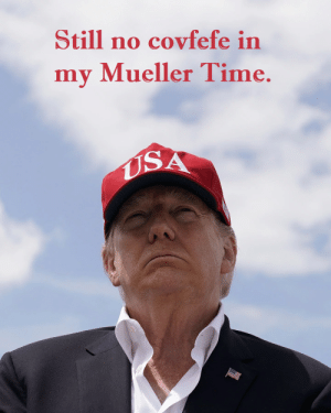 Time, Usa, and Still: Still no covfefe in  my Mueller Time.  USA Seriously though: