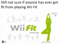 Memes, Nintendo, and 🤖: Still not sure if anyone has ever got  fit from playing Wii Fit  Nintendo  Wii Fit  IG: PolarsaurusRex Any of you know anyone? 🤔 Follow me for more! (@PolarSaurusRex)