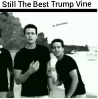 Funny,  Still the Best, and Best Trump: Still The Best Trump Vine  dclips  lg: a Still the best Trump Vine lmao 😂😂😂😂 HoodClips
