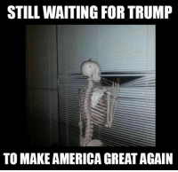 Still Waiting: STILL WAITING FOR TRUMP  TO MAKE AMERICA GREAT AGAIN