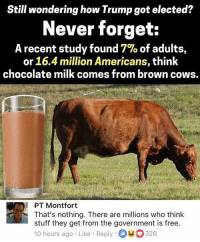 nothing there: Still wondering how Trump got elected?  Never forget:  A recent study found 7% of adults,  or 16.4 million Americans, think  chocolate milk comes from brown cows.  PT Montfort  That's nothing. There are millions who think  stuff they get from the government is free.  10 hours ago . Like-Reply-O-0326