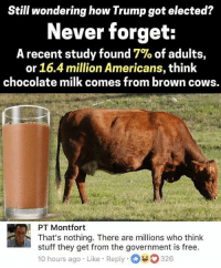 Memes, Chocolate, and Free: Still wondering how Trump got elected?  Never forget:  A recent study found 7% of adults,  or 16.4 million Americans, think  chocolate milk comes from brown cows.  PT Montfort  That's nothing. There are millions who think  stuff they get from the government is free.  10 hours ago Like Reply 326 (GC)