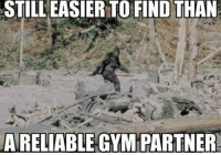 Shots fired.: STILLEASIERTO FIND THAN  A RELIABLE GYM PARTNER Shots fired.