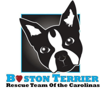 Visit our website for current adoptables!  http://www.bostonrescueteam.com/animals/list: STON TERRIER  Rescue Team of the Carolinas Visit our website for current adoptables!  http://www.bostonrescueteam.com/animals/list