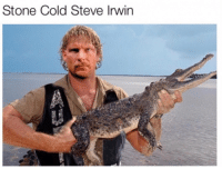 If you wanna see me kick that stingray's ass, gimme a hell yeah!: Stone Cold Steve Irwin If you wanna see me kick that stingray's ass, gimme a hell yeah!
