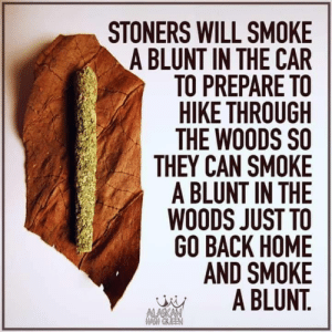 To Go Back: STONERS WILL SMOKE  A BLUNT IN THE CAR  TO PREPARE TO  HIKE THROUGH  THE WOODS SO  THEY CAN SMOKE  A BLUNT IN THE  WOODS JUST TO  GO BACK HOME  AND SMOKE  A BLUNT.  ALASKAN  OM GAEEN