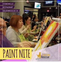 Memes, Thank You, and Paint: STONEWELLS  RESTAURANT  GOLDENRESCUE.CA  AINT NITE  Golden  Rescue We are having a great time at our Hamilton Paint Nite! 🎨 Thank you to everyone who's taking part and making this such a success! 🐾