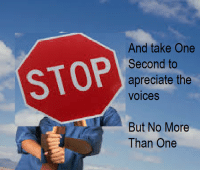 One, More, and Stop: STOP  And take One  Second to  apreciate the  voices  But No More  Than One