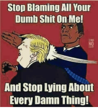 Dumb, Memes, and Shit: Stop Blaming All Your  Dumb Shit On Me!  SIRB  NO  And  Stop Lying About  Every Damn Thing!