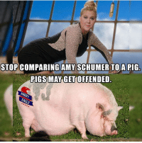 """Conservative, Usa, and Add: STOP COMPARING AMY SCHUMER TO A PIG  RIGS MAY GET OFFENDED. She blamed the """"alt-right"""" for her failed Netflix special... maybe because you think jokes like """"shit coming out of all my holes"""" and """"my pussy stinks"""" are funny. Sorry Amy, it's not. In fact, I don't think it's a joke at all. I genuinely believe both of those things when you say them. Stop blaming right wingers for your problems, and go see a proctologist for your blown out b-hole and a gyno for your Japanese fish market feminine odors. stankass youdirty notourfault bootystank liberals libbys democraps liberallogic liberal ccw247 conservative constitution presidenttrump resist stupidliberals merica america stupiddemocrats donaldtrump trump2016 patriot trump yeeyee presidentdonaldtrump draintheswamp makeamericagreatagain trumptrain maga Add me on Snapchat and get to know me. Don't be a stranger: thetypicallibby Partners: @theunapologeticpatriot 🇺🇸 @too_savage_for_democrats 🐍 @thelastgreatstand 🇺🇸 @always.right 🐘 @keepamerica.usa ☠️ @republicangirlapparel 🎀 TURN ON POST NOTIFICATIONS! Make sure to check out our joint Facebook - Right Wing Savages Joint Instagram - @rightwingsavages Joint Twitter - @wethreesavages"""