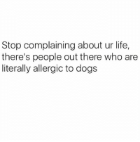 Dogs, Life, and Memes: Stop complaining about ur life,  there's people out there who are  literally allergic to dogs My worst nightmare 😫 You need to follow @thespeckyblonde @thespeckyblonde @thespeckyblonde @thespeckyblonde