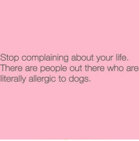 Im a Dog myself so who's MY bestfriend: Stop complaining about your life.  There are people out there who are  literally allergic to dogs. Im a Dog myself so who's MY bestfriend