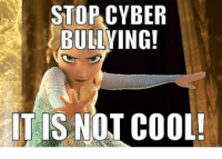 bully: STOP CYBER  BULLYING!  IT IS NOT COOL!