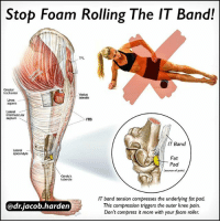 Memes, Common, and How To: Stop Foam Rolling The IT Band!  lateralis  intermuscular  septum  ITB  IT Band  epicondyle  Fat  Pad  (source of pain)  Gerdy's  IT band tension compresses the underlying fat pad.  @dr.jacob harden  This compression triggers the outer knee pain.  Don't compress it more with your foam roller THE TRUTH ABOUT IT BAND SYNDROME The iliotibial (IT) band is a thick sheet of connective tissue on the outside of the thigh and is a common source of pain on the outer knee. . We used to think that the band got tight and rubbed over the outside of the femur, causing 🔥friction and inflammation of a bursa on the outer knee. We now know that the IT band is locked down tighter than Fort Knox and isn't moving anywhere. And that bursa doesn't even exist. . What's really going on is a compression syndrome.🗜 While there is no bursa, what is present is a fat pad with a lot of nerve endings. And when the IT band gets taught, it compresses on the fat pad, causing pain. . ❌So the last thing we want to do is add more compression by rolling on it! If you've been rolling and you're not seeing results, put the roller away as you may be prolonging the irritation. . ✅Instead, spend time working on the muscles attached to it at the hip. Then address movement faults that lead to the compression in the first place. . Where do you want to go next with this? Do you want me to show you how to release the glute and TFL or do you want me to dive right into movement correction? Let me know below! . MyodetoxOrlando Myodetox