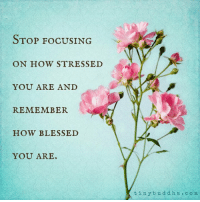<3 Tiny Buddha  .: STOP Focus ING  ON HOW STRESSED  YOU ARE AND  REMEMBER  HOW BLESSED  YOU ARE  t in y bud d h a c o m <3 Tiny Buddha  .