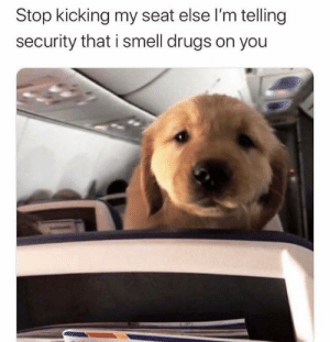It's the ones you'd least expect to snitch: Stop kicking my seat else l'm telling  security that i smell drugs on you It's the ones you'd least expect to snitch