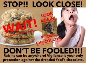 Chocolate, Can, and Look: STOP!! LOOK CLOSE!  LOOK  AGAIN!  WAIT!  FOOL'S  CHOCOLATE  DON'T BE FOOLED!!  Raisins can be anywhere! Vigilance is your only  protection against the dreaded fool's chocolate. Fools chocolate.