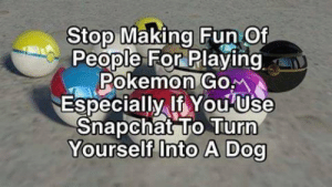 True.: Stop Making Fun Of  People For Playing  Pokemon Gom  Especially If You Use  Snapchat To Turn  Yourself Into A Dog True.