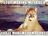 😐 puma: STOP MAKING ME LAUGH  YOU LL MAKE ME PUMA PANTS 😐 puma