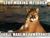 make me laugh: STOP MAKING ME LAUGH  YOUHL MAKE ME PUMA PANTS