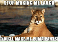 http://t.co/8fWWBKuMje: STOP MAKING ME LAUGH  YOULL MAKE ME PUMA PANTS http://t.co/8fWWBKuMje