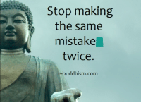 Memes, Buddhism, and 🤖: Stop making  the same  mistake  twice.  e-buddhism com