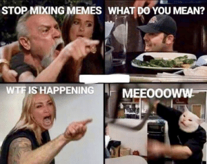 What does it mean: STOP MIXING MEMES WHAT D0 YOU MEAN?  WTFIS HAPPENING  MEEO0OWW What does it mean
