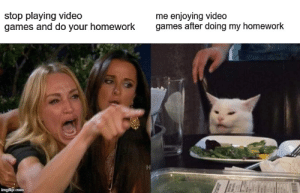 Bad, Funny, and Meme: stop playing video  games and do your homework  me enjoying video  games after doing my homework  imgflip.com may be a bad made meme,but relatable