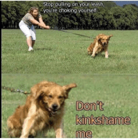 Memes, Kink, and Via: Stop pulling on your leash,  youre choking yoursei  me Kink shaming is my kink. via /r/memes https://ift.tt/2nYjVBI