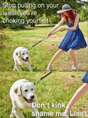Memes, Best, and Boy: Stop pulling on your  leash youre  choking yourselfl  Don't kink  shame me Lisal Best boy via /r/memes https://ift.tt/2ZONbw2