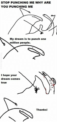 Memes, True, and Hope: STOP PUNCHING ME WHY ARE  YOU PUNCHING ME  My dream is to punch one  million people.  I hope your  dream comes  true  Thanks! https://t.co/saMVsqiaiG