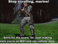 Scare, Sorry, and Tumblr: Stop scrolling, marine!  Sorry for the scare, sir. Just making  sure you re on WiFi and not cellular data. awesomacious:  Stop it right there and pay attention! Please